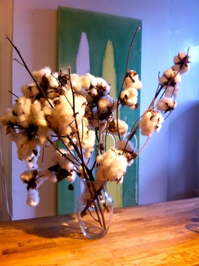 Nicholas Riggle on his cotton branches