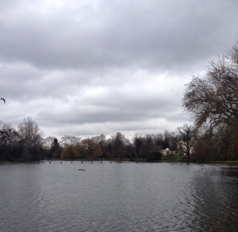Jon Ronson chose the pond in Regent's Park.