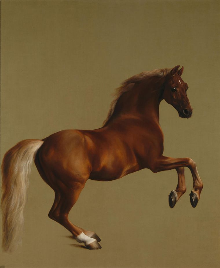 839px-Whistlejacket_by_George_Stubbs
